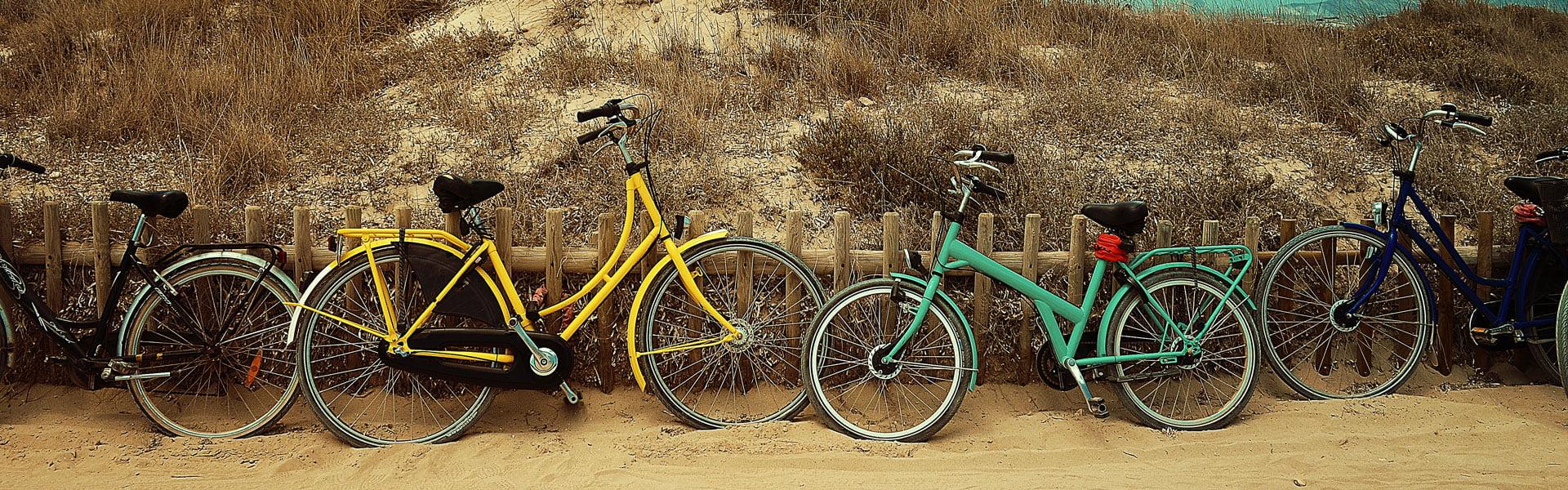 Visitar Valencia en bicicleta. Guía de turismo Valencia