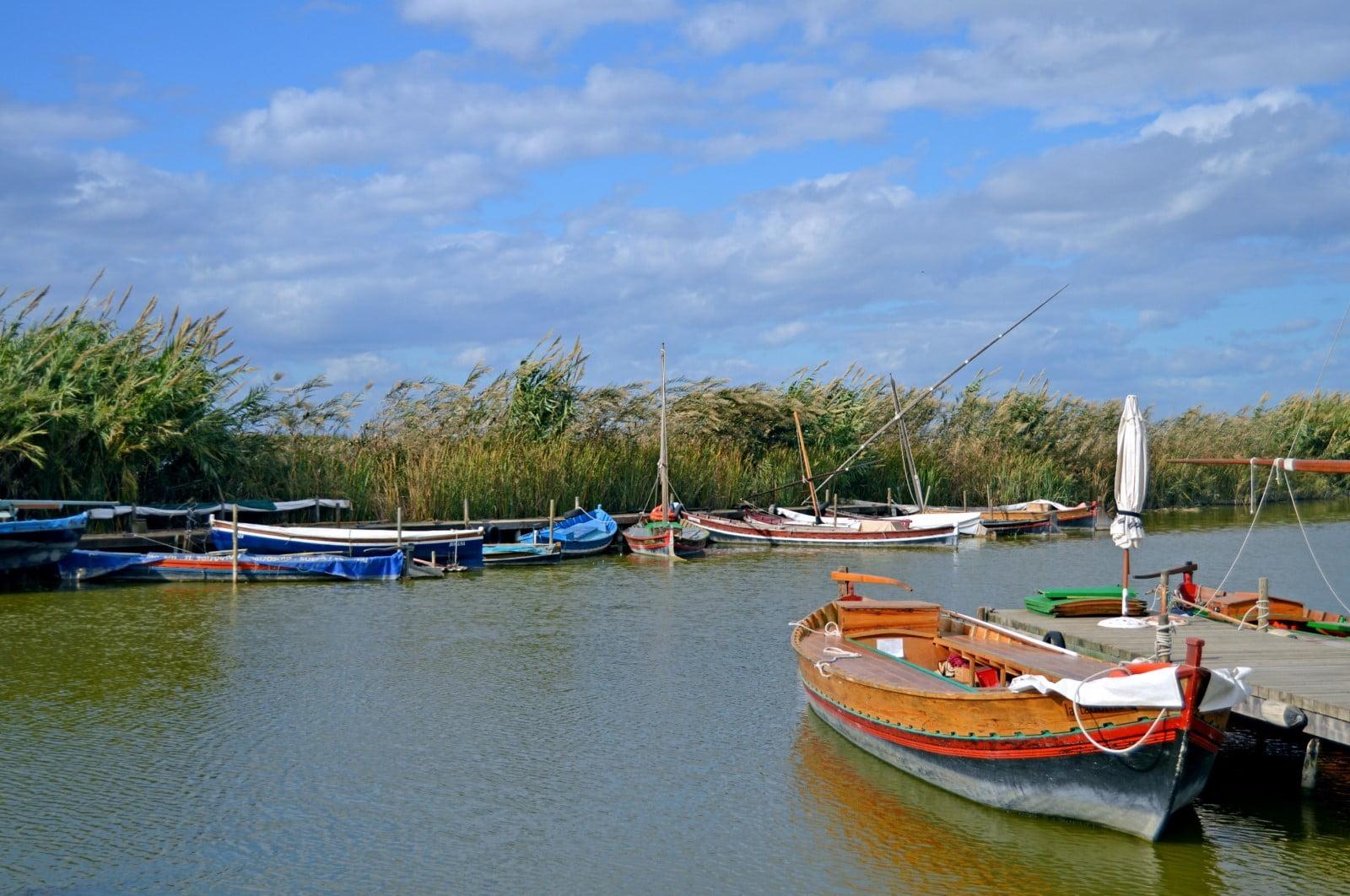 Visitas guiadas Parque Natural ALbufera. Paseo en barca